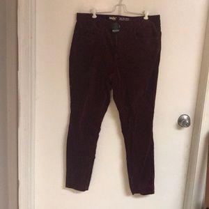 Burgundy Velour Pants